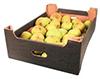 Яблоки Boskoop 70+  кг новый урожай